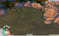thesims4 outdoor gamepack InsectBlog09